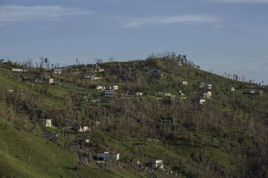 Devastated homes and stripped foliage in Cidra, Puerto Rico, Oct. 12. , 2017. The hurricane and how the U.S. has dealt with the devastation it caused has brought into stark relief the island's colonial status. Photo: DENNIS M. RIVERA PICHARDO /NYT / NYTNS