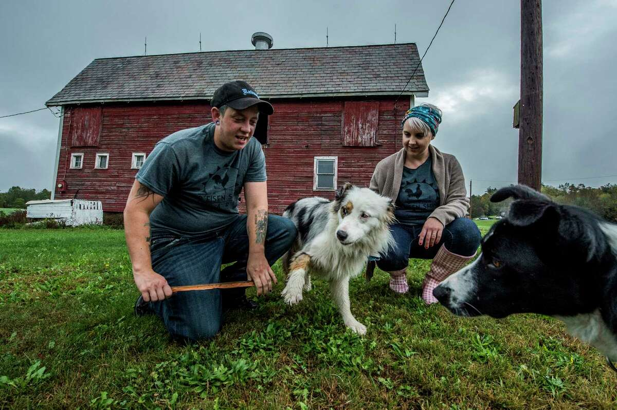 Ejay and Kim Eisen, right entertain their two pups Rio the Aussie and Swanson the Border at their R'Eison Shine Farm Monday Oct. 9, 2017 in Schagticoke, N.Y. (Skip Dickstein/Times Union)