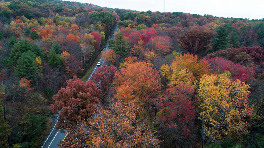 In New England, many trees aren't changing colors as vibrantly as they normally do because they take cues for when to turn from the temperature. Photo: David Mckeown, MBI / Republican-Herald