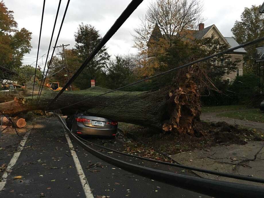 Vicious winds of 56 miles per hour downed trees in front of 66 Howard Ave. in New Haven Sunday night. Photo: Photo Courtesy Of Rick Fontana