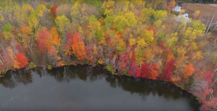 A screenshot from a 2017 fall color video in Michigan. Photo: Midland Daily News