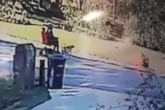 A Roman Forest man who walks his dogs while riding his scooter has had several scary encounters with stray dogs in the area, and now the problem has gotten so bad that police are sending a strong message to the public about pet vigilance.