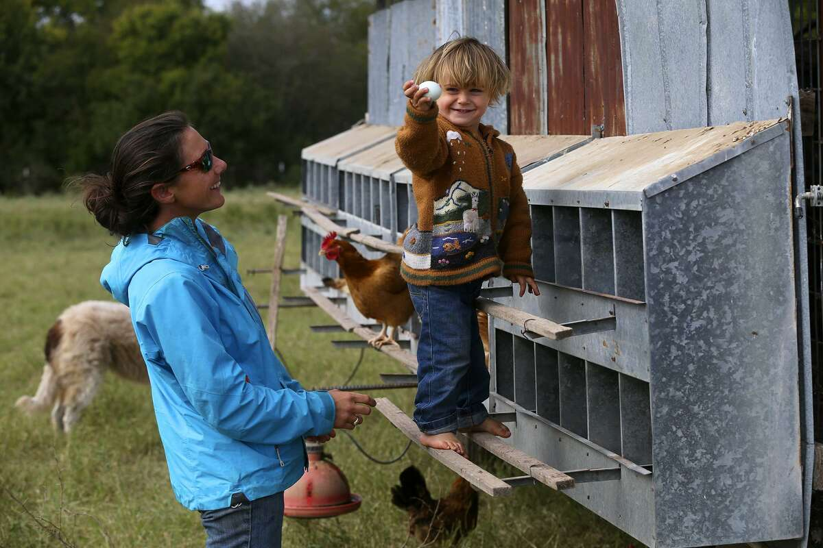 Jack Krause, 2, shows his mother Mandy Krause (left) an egg laid by one of the hundreds of chickens she and her husband Travis are raising at the Parker Creek Ranch near D'Hanis. The Krause family specializes in pasture raised chickens for eggs and meat, as well as grass fed beef and pasture raised turkeys. The family provides eggs and poultry meat for many area restaurants and food suppliers.