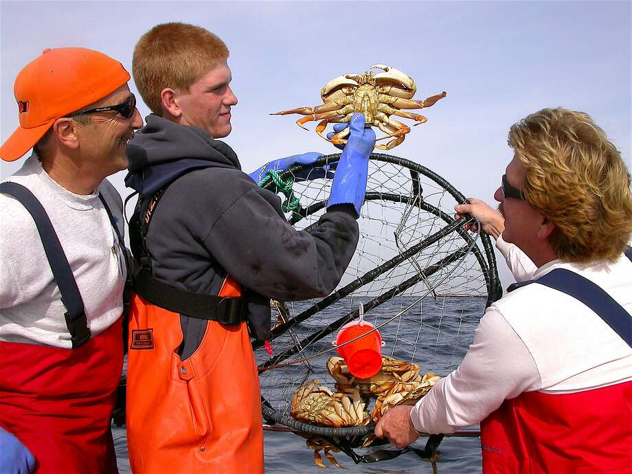 Pence MacKimmie holds up a sport-caught Dungeness crab caught in crab pot with dad Bruce on right, pal Doug Laughlin on left Photo: Tom Stienstra, Tom Stienstra / The Chronicle