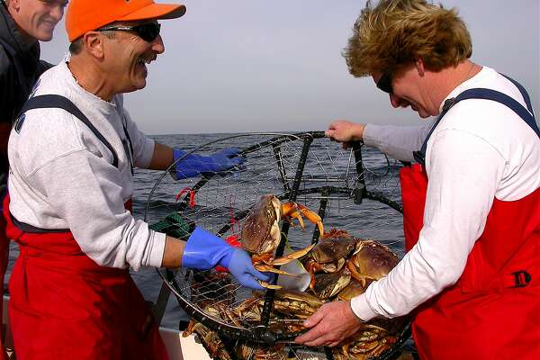 Doug Laughlin shows off a sport-caught Dungeness crab to pal Bruce MacKimmie on right, Pence MacKimmie on left, among a nice haul in a pot fished off Half Moon Bay