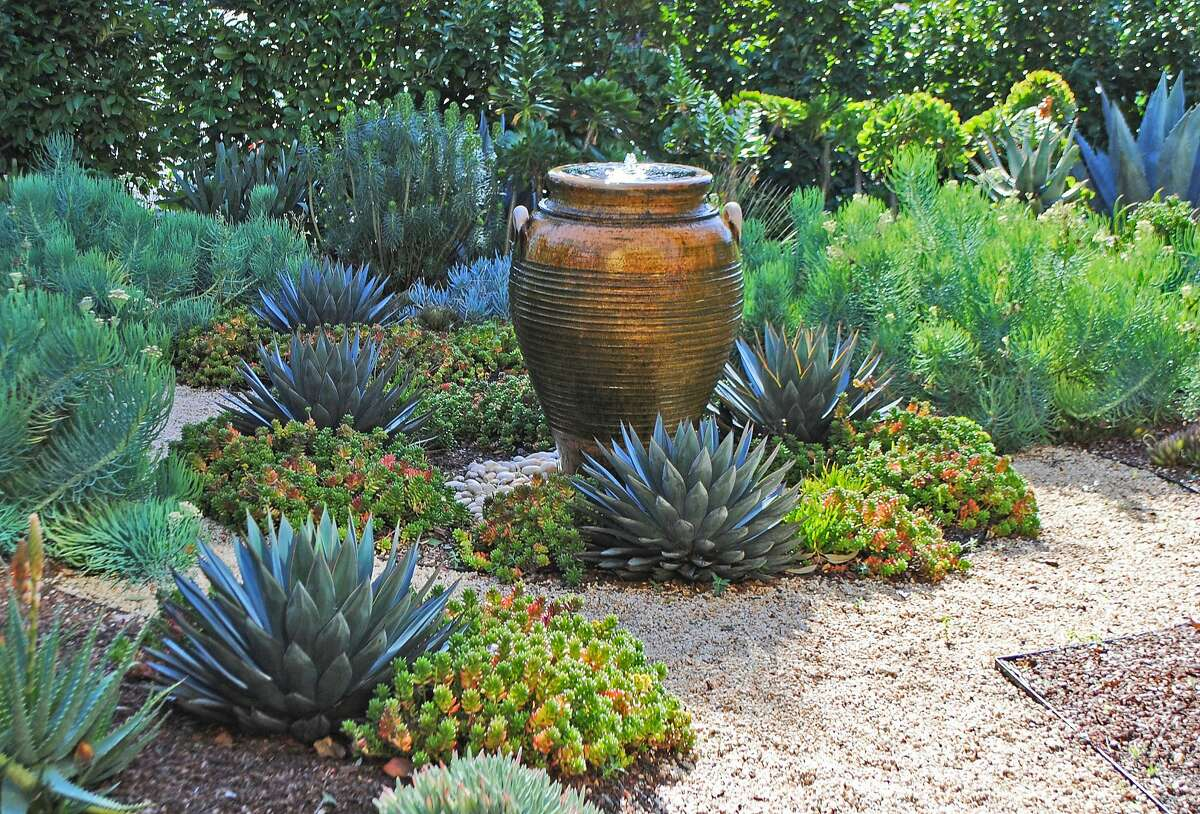 """A copper-colored fountain serves as a Bay Area garden's glistening focal point. Repeating its orange hue are the edges of Agave 'Blue Glow' and Sedum 'Pork and Beans.' In the background are Senecio vitalis and euphorbia shrubs. Photo: Rebecca Sweet from """"Designing With Succulents"""" / Timber Press"""