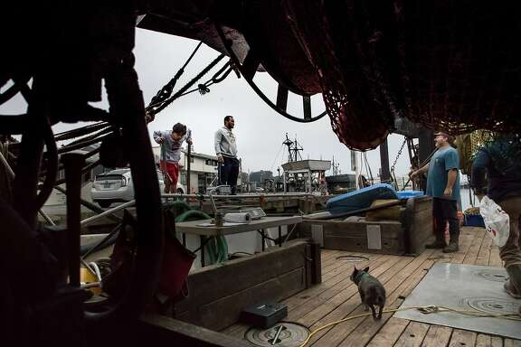 Joe Pennisi takes an order from Nome Tiatia and son, Skyler, 9, as pet dog, Sage, wanders around on The Pioneer on Sunday, Oct. 29, 2017 in San Francisco, Calif.