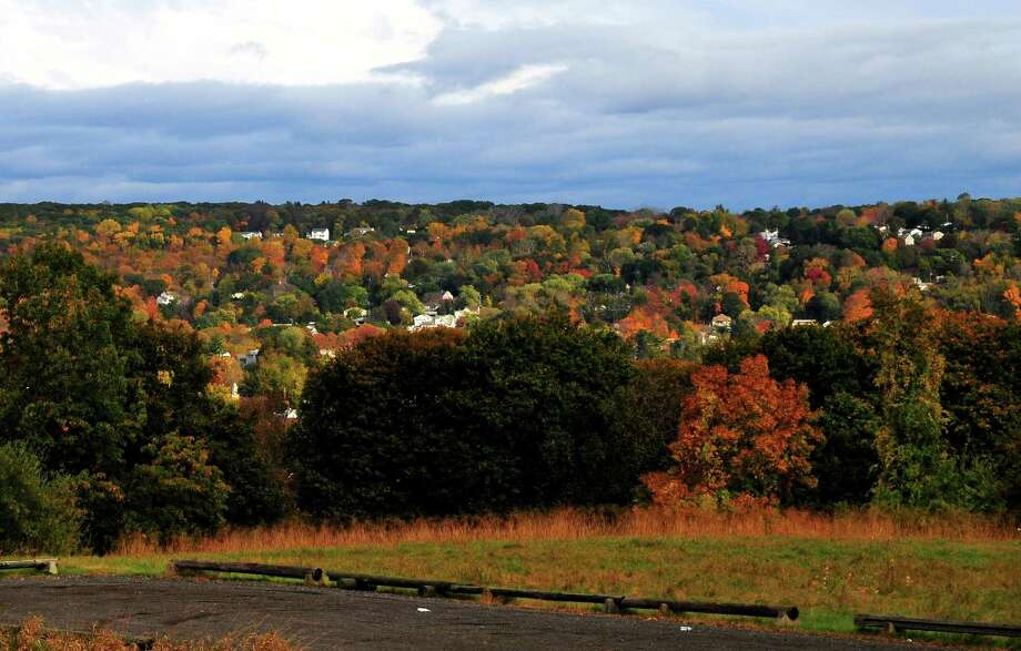 File art of Connecticut foliage. Photo: Christian Abraham / Hearst Connecticut Media / Connecticut Post