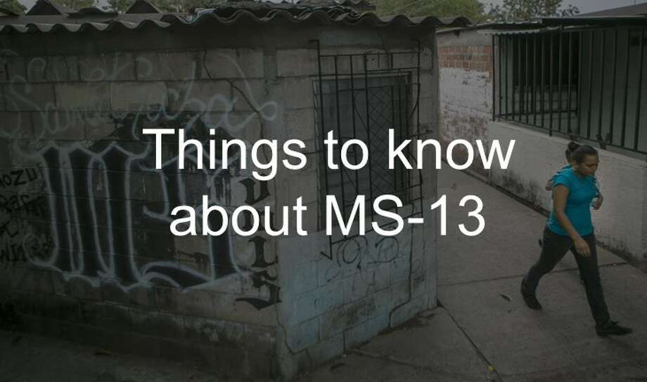 Learn more about the MS-13 gang up ahead. Photo: Getty Images