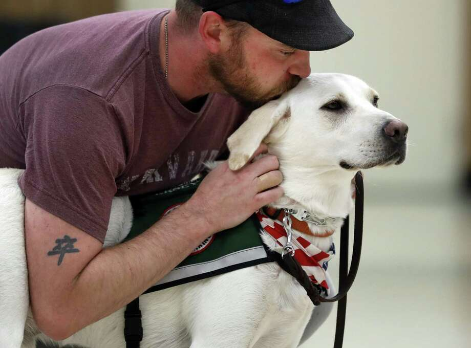 Army veteran Jacob Burns bonds with Jersey, his new support dog, as part of a training session in Collinsville, Ill. A reader says the Veterans Administration must do more to help returning soldiers with PTSD. Photo: Jeff Roberson /Associated Press / Copyright 2017 The Associated Press. All rights reserved.