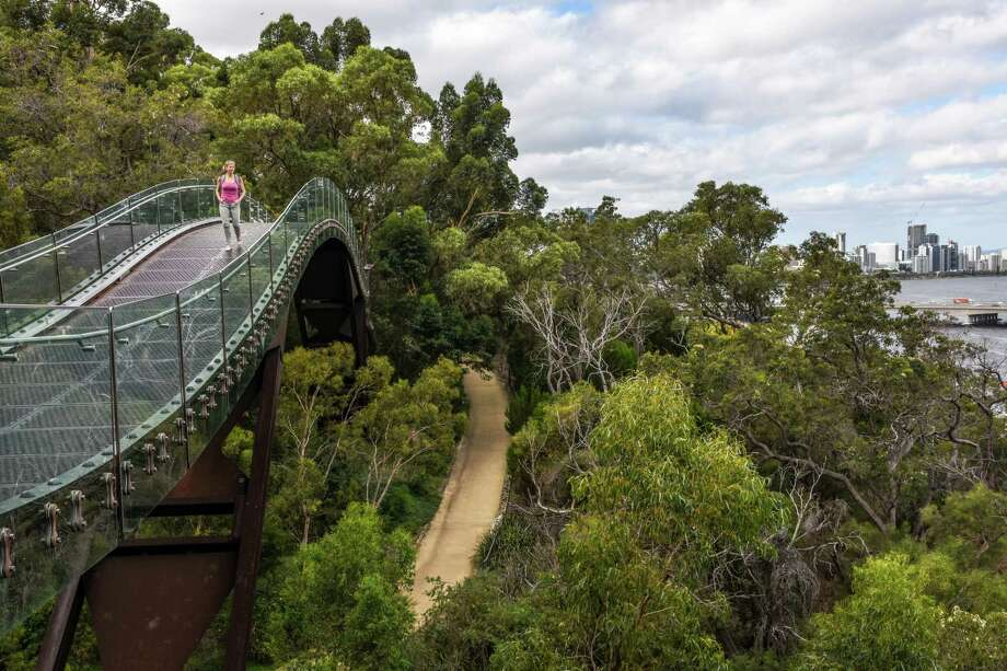 The Lotterywest Federation Walkway in Kings Park Photo: James Hutchison / Margo Pfeiff