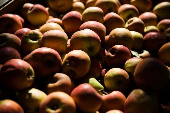 Apples are seen on display at Hale's Apple Farm in Sebastopol, Calif. Saturday, October 28, 2017.