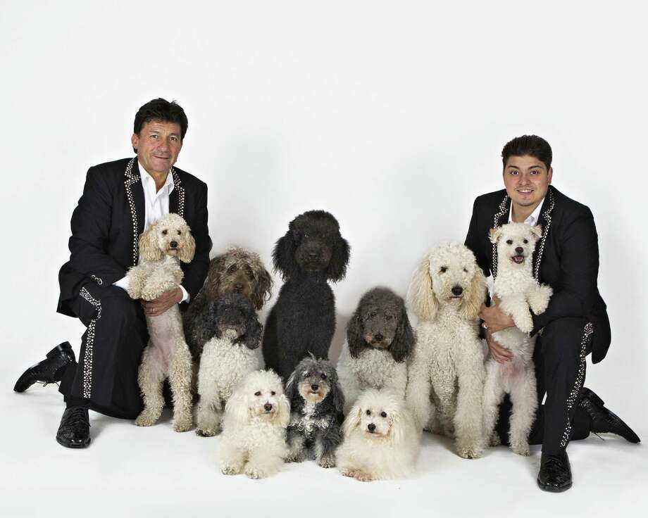 """The Olate Dogs, winners of """"America's Got Talent,"""" performs at the Ridgefield Playhouse on Wednesday, Nov. 15. Photo: Craig Melone / Contributed Photo"""