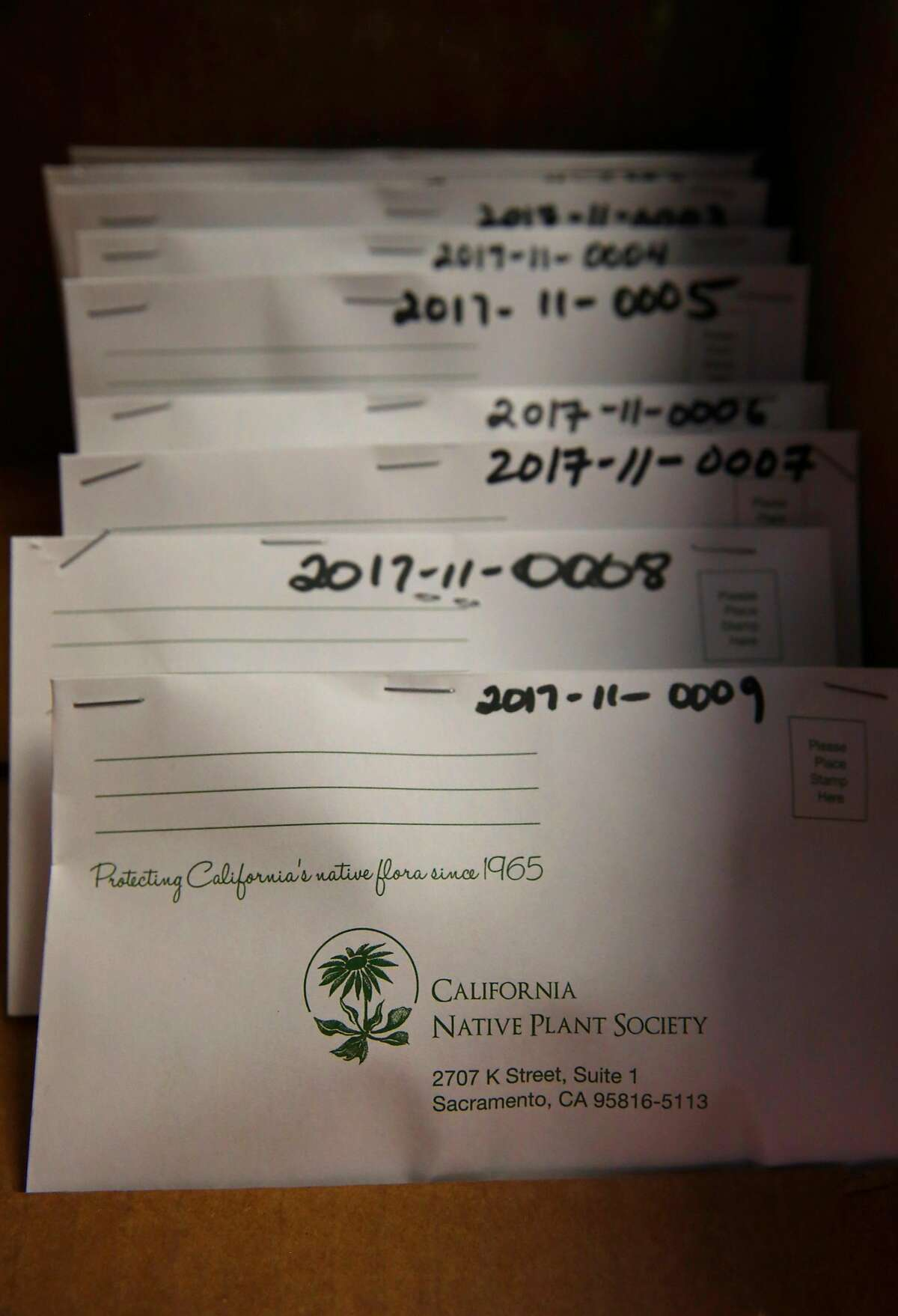 Envelopes containing acorns are cataloged as members of the California Native Plant Society begin the sorting and processing of the first shipment of oak tree acorns to their offices in Sacramento, Ca. on Wednesday November 1, 2017.�The society put out a call to the public to collect acorns to supply a reforestation of oak trees destroyed by the massive Napa and Sonoma County wildfires.