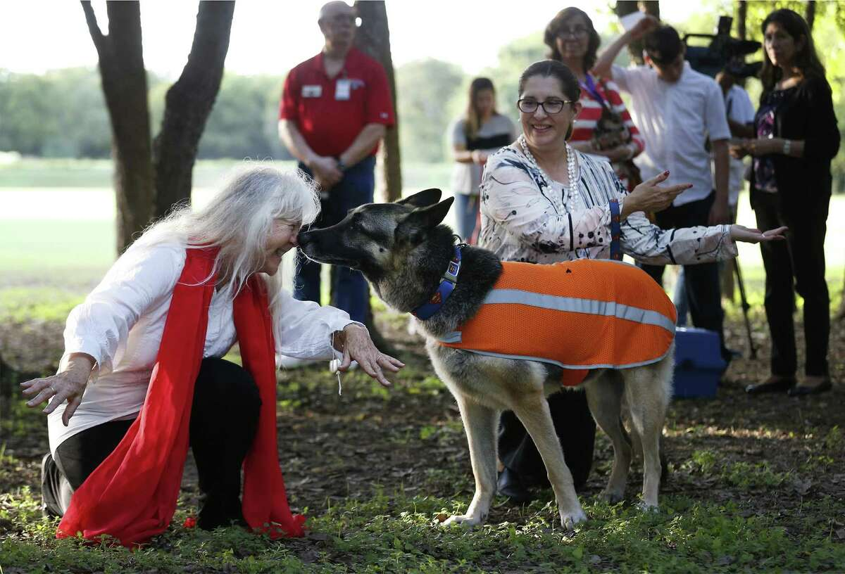 Sister Martha Ann Kirk (left) receives a nuzzle from Cristina Ariza's pet German Shepherd as pets and their owners attend the annual Blessing of the Animals honoring the feast day of St. Francis of Assisi at the University of the Incarnate Word on Oct. 4. About 50 owners and their pets gathered at the Headwaters Sanctuary located adjacent to the UIW campus near dusk where Sister Martha Ann Kirk performing the blessings. The Blessing of the Animals honors the feast day of St. Francis of Assisi, the patron saint of animals and ecology.
