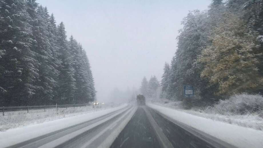 FILE -- Snow falls in the Black Hills near Olympia on Nov. 3, 2017 (Photo: Shawn O'Neill) Photo: KOMO News