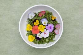 Ggot Bibimbab _ Rice mixed with flowers and chili paste,Korean Food