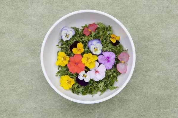 Ggot Bibimbab _ Rice mixed with flowers and chili paste,Korean Food