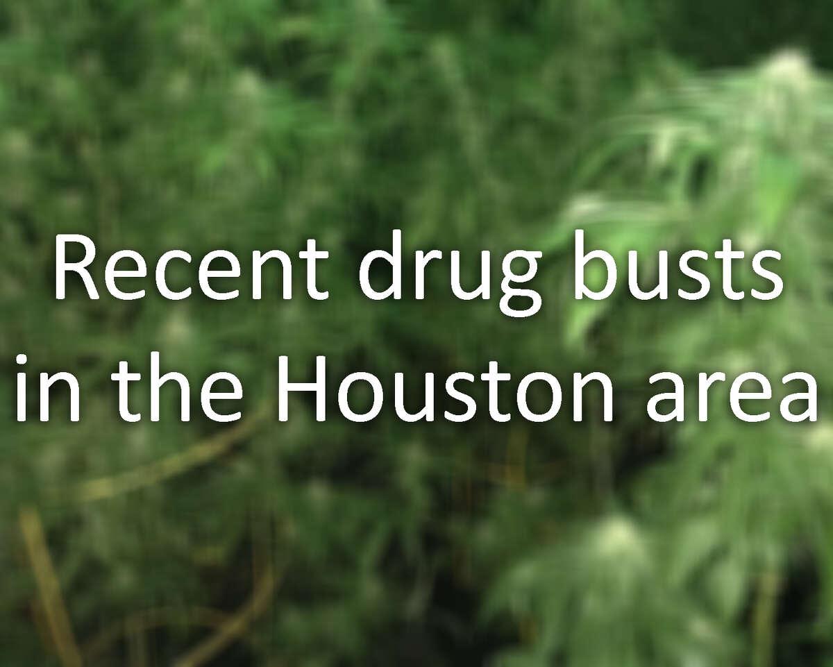 drug bust transition
