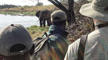 The Active Safari: Now you can explore parts of Africa by