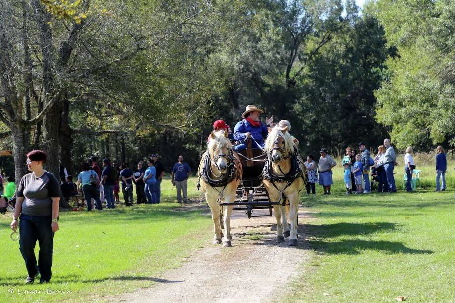 Visitors to the 27th annual Martyn Farm Harvest Festival will see sights that are uncommon today but were typical on farms 117 years ago, such as horse-drawn wagons and homemade toys. Photo: Lyman Brown / Lyman Brown