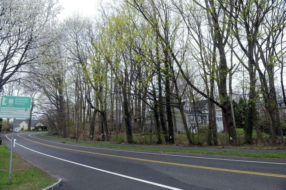 A 2013 photo of Oval Avenue in Riverside. Photo: Helen Neafsey / Helen Neafsey / Greenwich Time