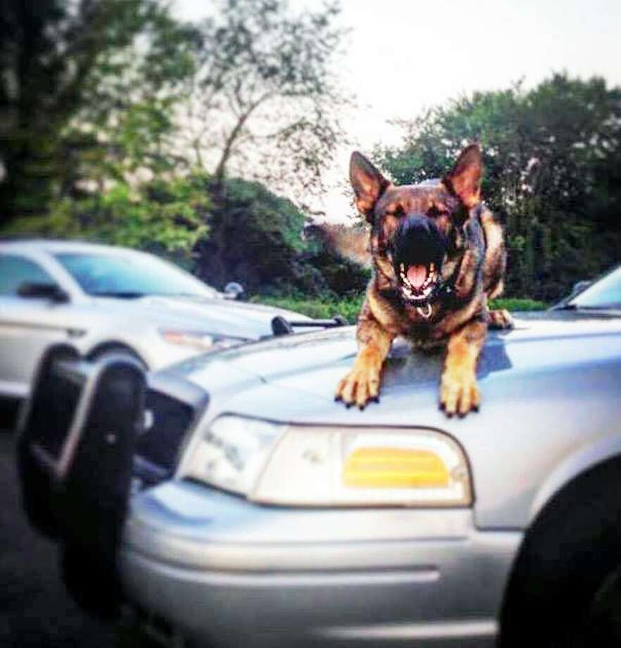 Rocky is assigned to Trooper First Class Ryan Cloukey at Troop C. Photo: Contributed