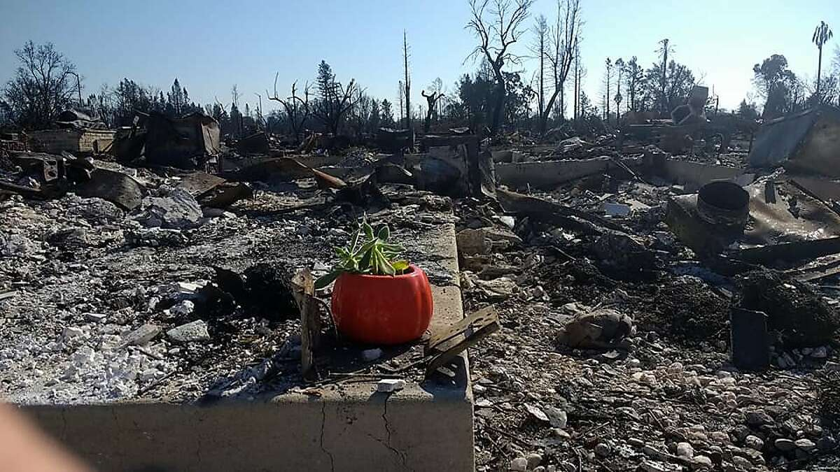 The remains of their house in Santa Rosa, which Kara Lemieux decorated with a pumpkin to try to celebrate Halloween.