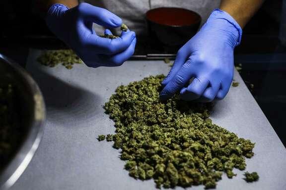 An employee sorts marijuana at the Green Cross cannabis dispensary in San Francisco's Excelsior neighborhood.