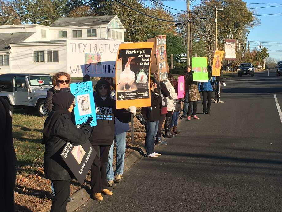 Vegans protested outside Gozzi's Turkey Farms, 2443 Boston Post Road, Guilford, on Saturday. Photo: Ed Stannard / Hearst Media Connecticut /
