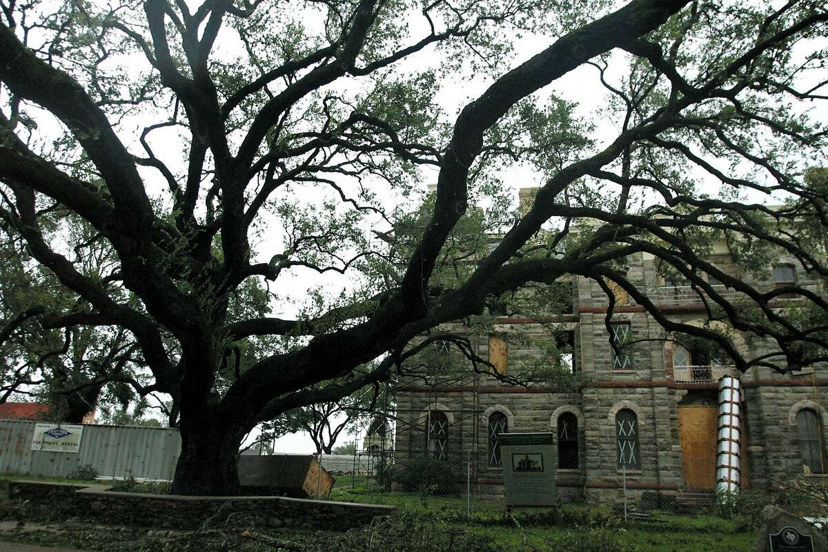 Click ahead to find out more Texas history facts you might not have known before. Residents of Goliad have been split, largely down racial lines, over differing interpretations of the town's history. Part of the dispute stems from a large oak tree, called the Hanging Tree, where Anglos hanged 70 Mexican-American ox cart drivers in 1857.