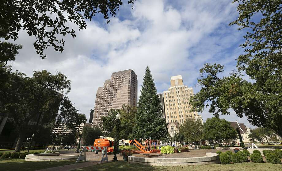 The yet-to-be decorated city Christmas tree is seen Tuesday, Nov., 14, 2017 in Travis Park. The tree was previously placed in Alamo Plaza but pending changes to the area around the Alamo and the removal of the Confederate soldier statue in Travis Park made room for the tradition to move to the new location. Photo: William Luther, San Antonio Express-News