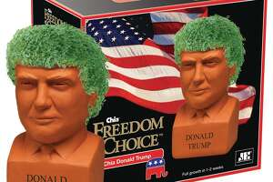 """The """"Freedom of Choice"""" Chia Donald Trump."""