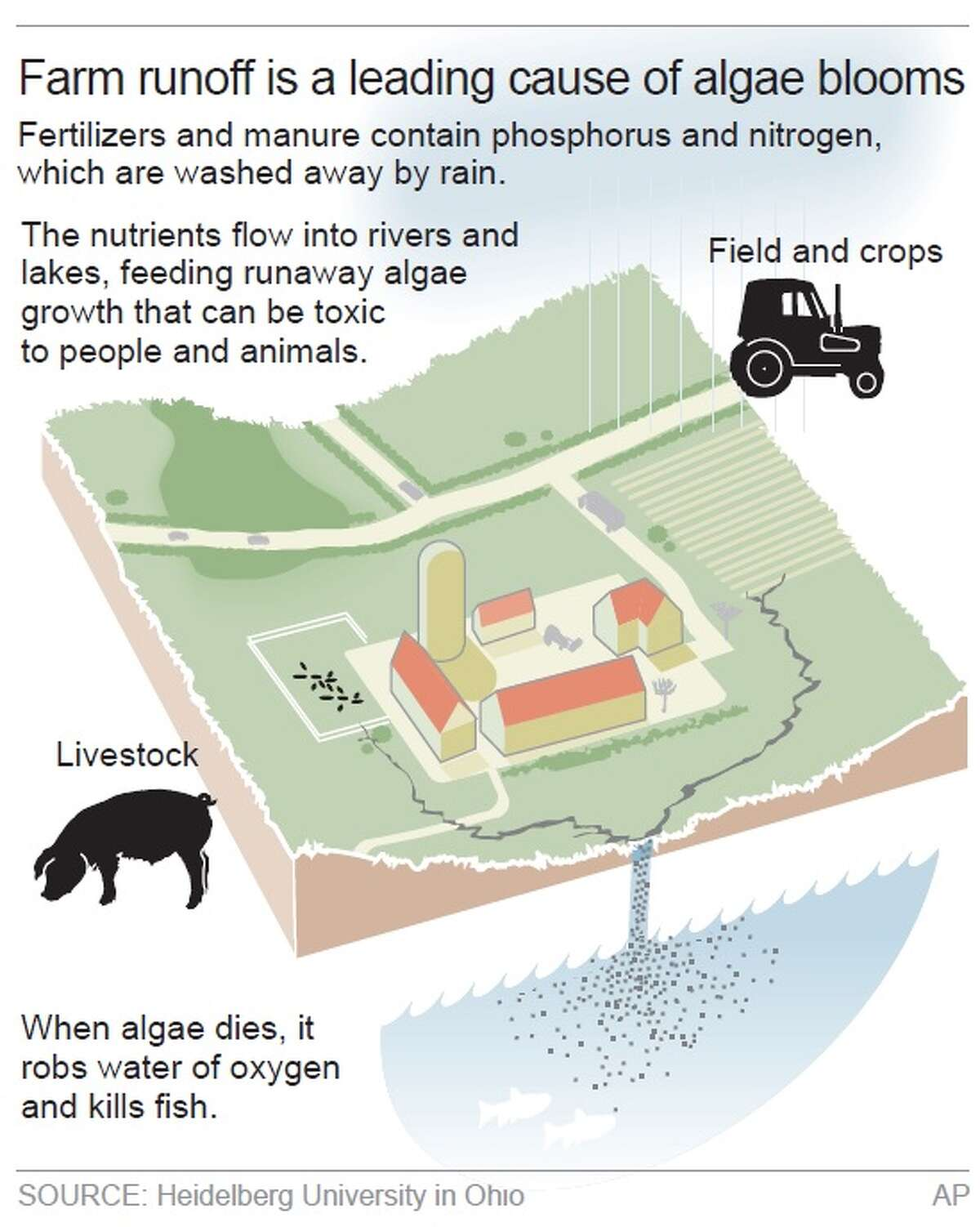 AP Explains: Farm runoff causes toxic algae blooms.