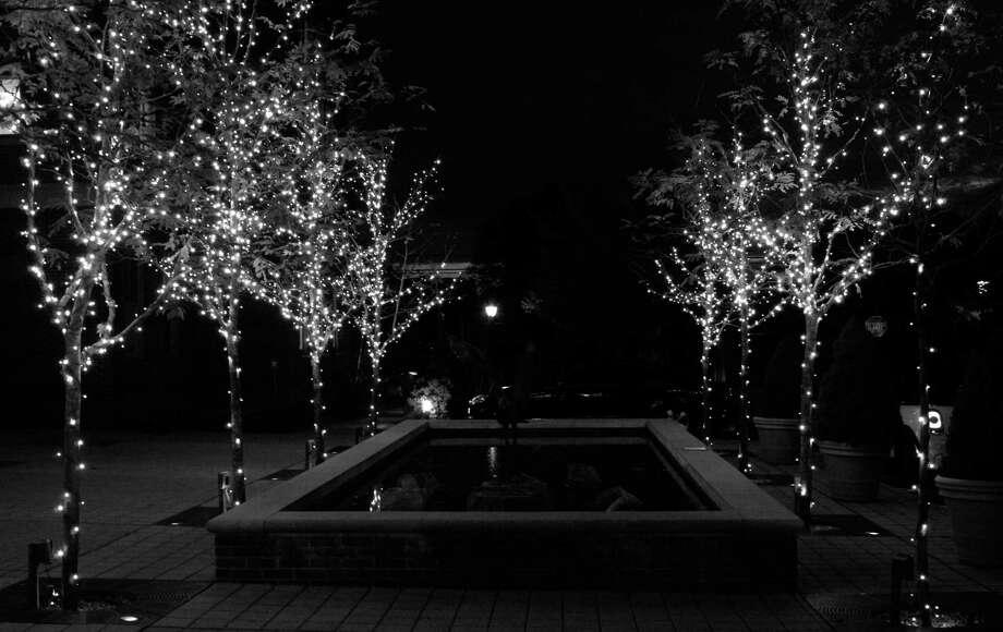 Tea lights on trees outside the Darien Library Photo: Erin Kayata / Hearst Connecticut Media / Darien News