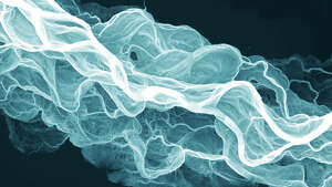 Laser imaging meant to detect geological hazards offers a new view of Washington's land forms. Take a look at 20 of the best images. Above, the Sauk River's channels are shown in a lidar image of that waterway.