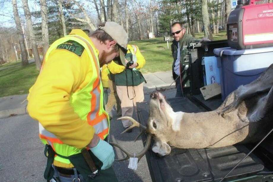 The DNRare checking harvested deer at various locations throughout Michigan. (John Raffel/file photo)