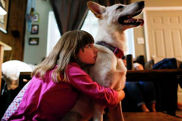 Ava Pettit, 8, left, hugs the family dog, Zoe, Tuesday, June 27, 2017 in Webster. About a year ago Zoe bit Ava in the face while jumping for a treat. Ava's parents rushed her to a hospital in their insurance network, but while there, four out of the five doctors who treated Ava were not in network, leaving the family with a $5000 bill. The family ended up paying $3600 after negotiations. ( Michael Ciaglo / Houston Chronicle )
