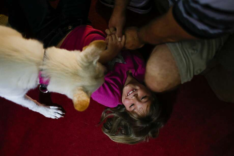 Ava Pettit, 8, center, plays with the family dog, Zoe, and her father, Jason Pettit, right, in Webster. Photo: Michael Ciaglo, Houston Chronicle