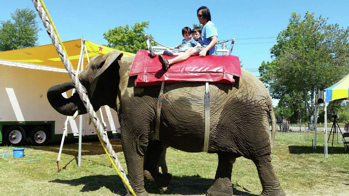 A family rides one of the Commerford family's elephants at the 2015 Goshen Fair.
