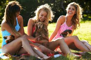 The new company Petflair has set out to give pet owners a fun, funky way to show off their furry friends.
