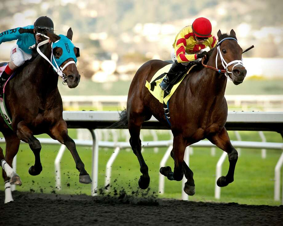 Right Hand Man, right, ridden by jockey Ricardo Gonzalez, won Sunday's Oakland Stakes at Golden Gate Fields in a time of 1:09.39. Photo: Shane Micheli, Vassar Photography