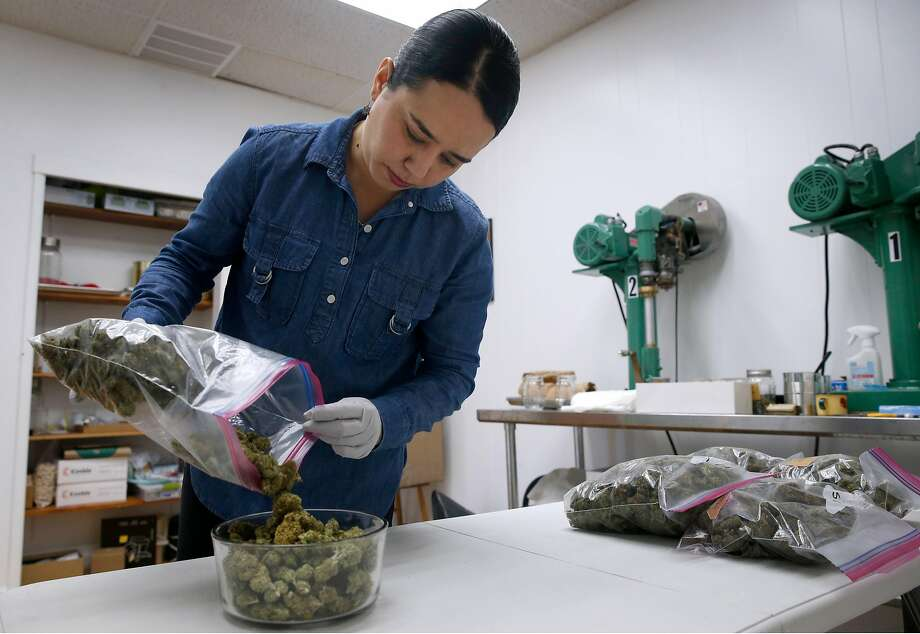 Claudia L. Mercado, founder of Calibueno cannabis canning and distribution, pours Skywalker buds into a bowl at her company's office in Oakland, Calif. on Saturday, Nov. 18, 2017. Mercado's start-up is close to securing a cannabis business permit in Oakland. Below; Claudia L. Mercado, founder of Calibueno cannabis canning and distribution, inspects product from one of her growers in Oakland, Calif. on Saturday, Nov. 18, 2017. Mercado's start-up is close to securing a cannabis business permit in Oakland. Photo: Paul Chinn, The Chronicle