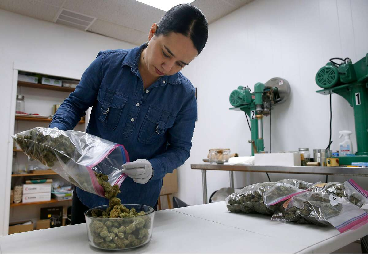 Claudia L. Mercado, founder of Calibueno cannabis canning and distribution, pours Skywalker buds into a bowl at her company's office in Oakland, Calif. on Saturday, Nov. 18, 2017. Mercado's start-up is close to securing a cannabis business permit in Oakland.