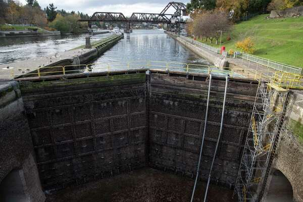 Seawater is held back by the 100-year-old gates of the Ballard Locks, Friday, Nov. 17, 2017.