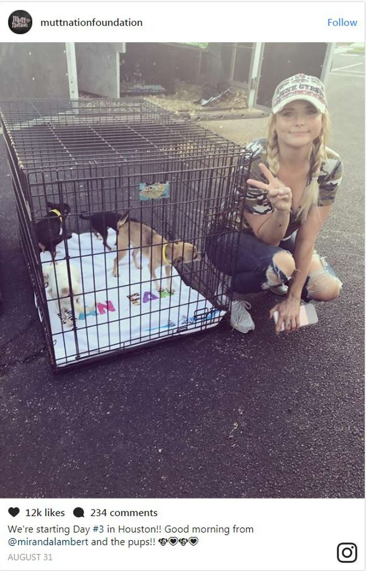 Miranda Lambert and her MuttNation Foundation came to Houston to rescue more than 200 dogs. The singer even took pets home to relieve crowded shelters.