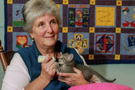 Victoria Williams feeds a 2-week-old kitten, a victim of Hurricane Harvey. For the past 35 years, she's worked to help AIDS patients and has been an LGBT community organizer.   Victoria Williams feeds a 2-week-old kitten, a victim of Hurricane Harvey. For the past 35 years, she's worked to help AIDS patients and has been an LGBT community organizer.