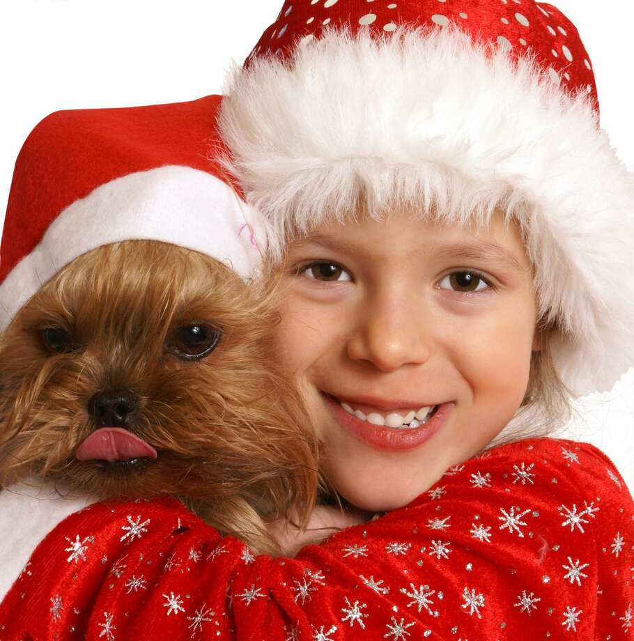 Need inspiration for a cute holiday photo? You can't go wrong with kids and/or pets. Photo: Fotolia /Shmel / Shmel - Fotolia