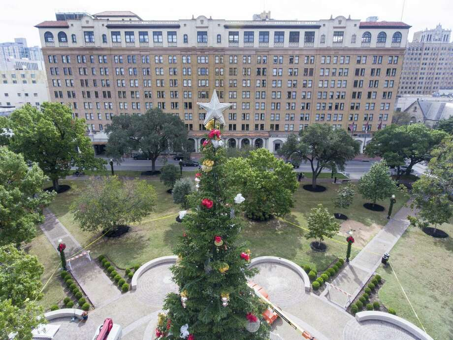 The 55-foot San Antonio Christmas tree stands Tuesday, Nov. 21, 2017 in the middle of Travis Park, with the St. Anthony hotel in the background. The holiday tree was moved to Travis Park from Alamo Plaza after the Confederate soldier monument was removed from the park and in anticipation of changes coming to Alamo Plaza with proposed redevelopment of the area. Photo: William Luther /San Antonio Express-News / © 2017 San Antonio Express-News
