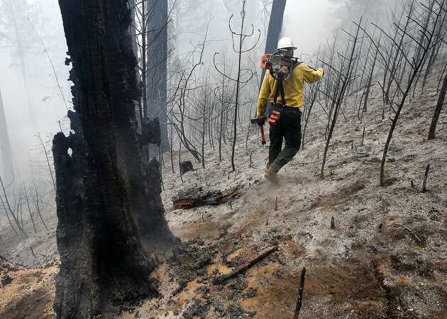 Huge wildfires can wipe out greenhouse gas gains